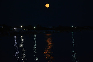 Come la notte stellata di Van Gogh - Like Van Gogh Starry Night.