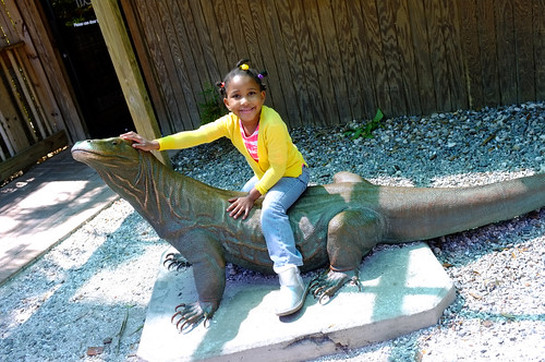 Fun at Florida Zoo