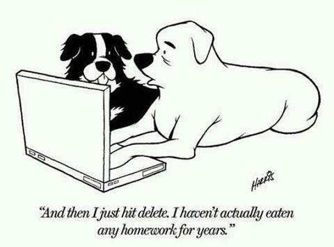 dogs delete