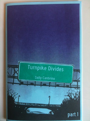 Turpike Divides by Sally Cantirino