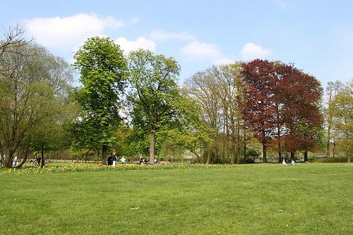 park with trees, grass and flowers