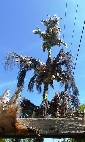 Papou13-Biak-Ile-Tour (71)1