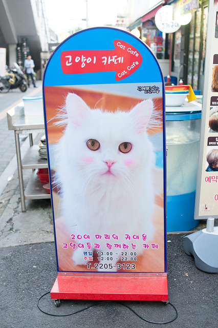 Korea20140924-96