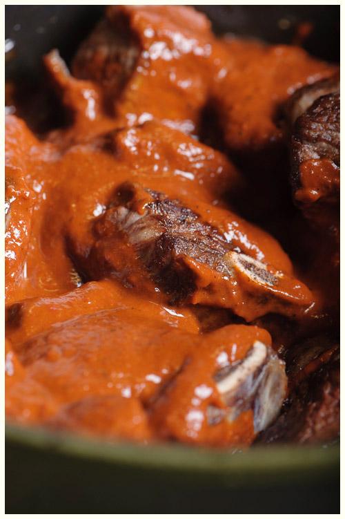 Guajillo-Braised Beef Shirt Rib Taco