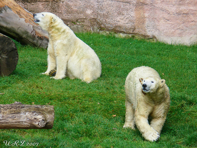 018-20071004-Vera & Vilma98