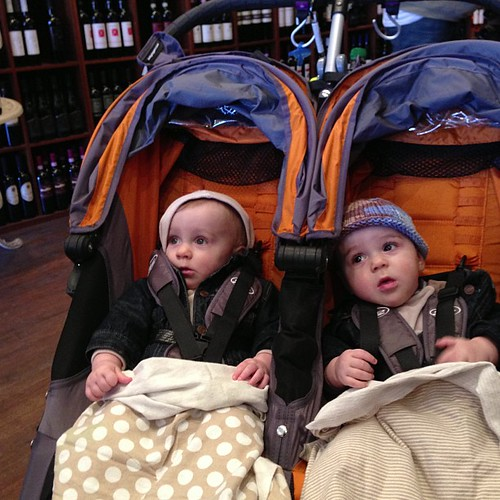 Another day, another wine store with some babies.