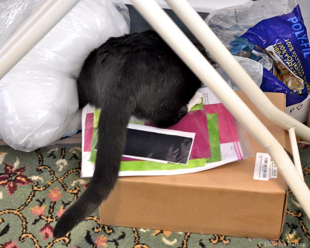 Jojo kitty diving into my sewing supplies, Elizabeth Ruffing