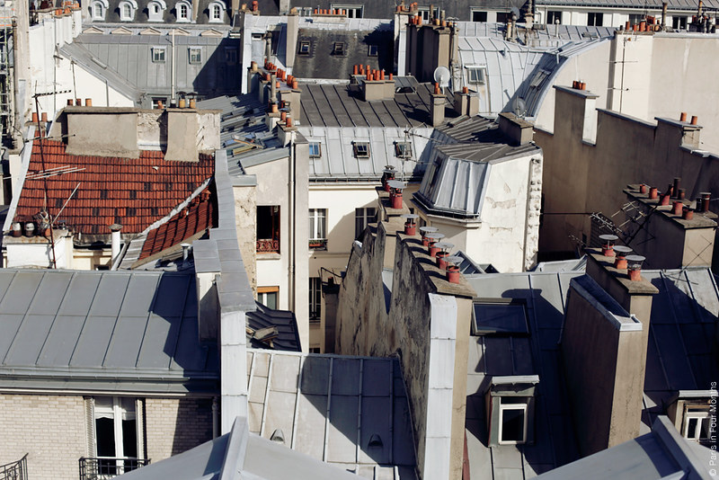 Amazing View Over the Parisian Rooftops