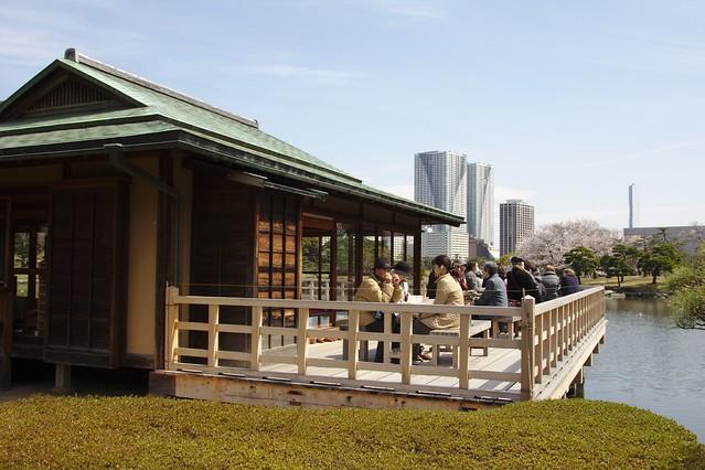 0290 - Hamarikyu Gardens