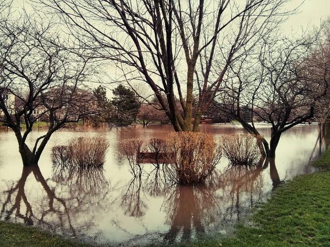 park after rain