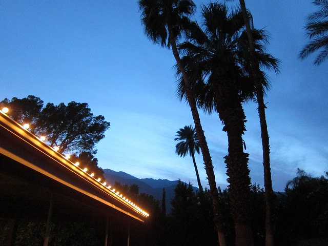 Backyard of our Midcentury Mod Rental at Dusk