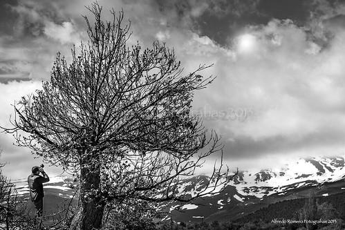 Foteando by Alfredo Romero Fotografias 