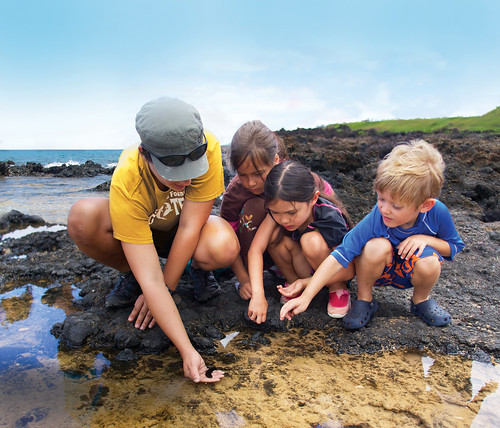ocean-camp-tide-pool-lesson
