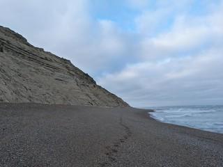 Playa de Punta Ninfas (Patagonia, Argentina)