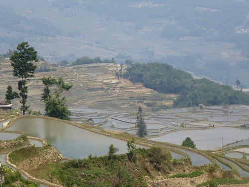 Yunnan13-Yuanyang 13-Quanfuzhoang (3)