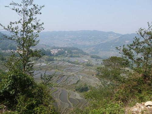 Yunnan13-Yuanyang 9 (4)