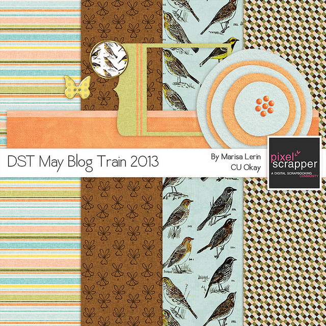 DST May Blog Train by Marisa Lerin