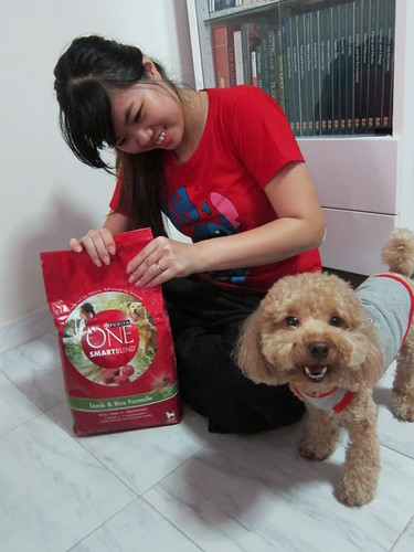 Purina ONE Bubble Leong