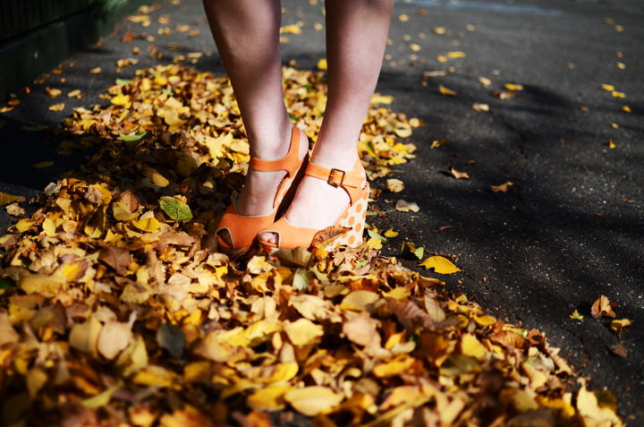orange leaves autumn polka dot shoes
