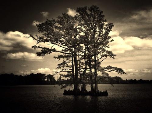 edentonnc uploaded:by=flickrmobile flickriosapp:filter=nofilter