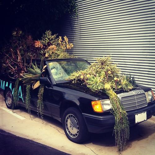 Mercedes Planter