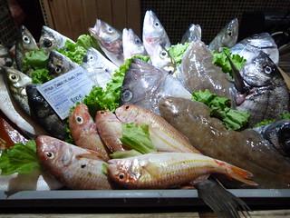 Pescado fresco en