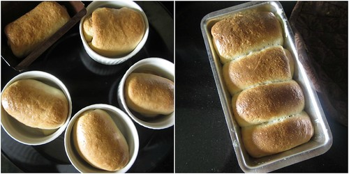 Hokkaido Milk Bread-step13
