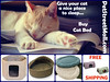Buy Cat Bed Today