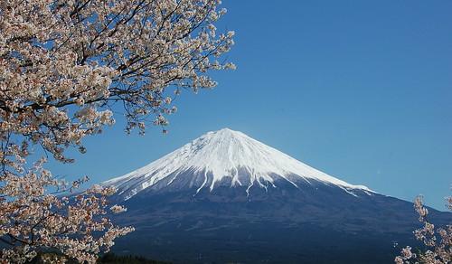 ★富士山とさくら
