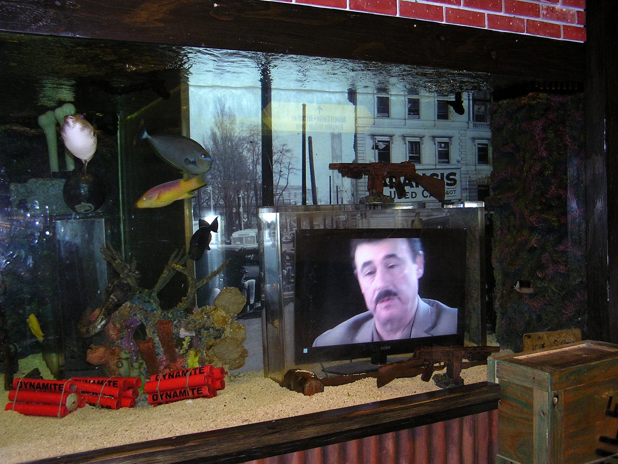 Aquarium for sale las vegas aquarium at the silverton for Fish tank las vegas