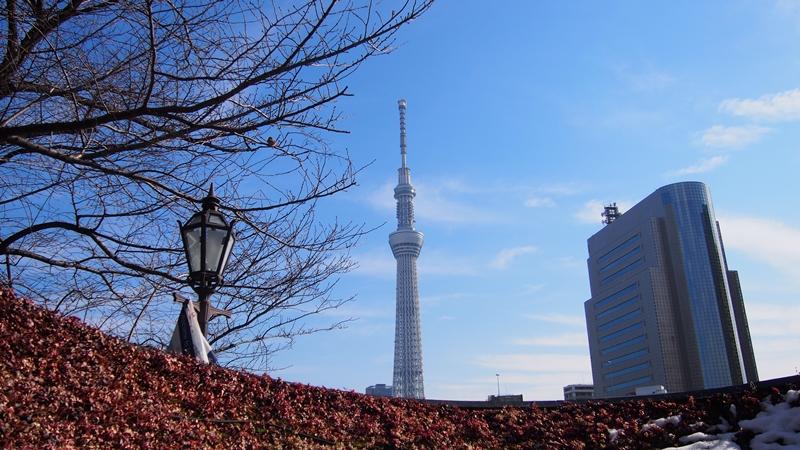 Tokyo Honeymoon 2013_day06_039