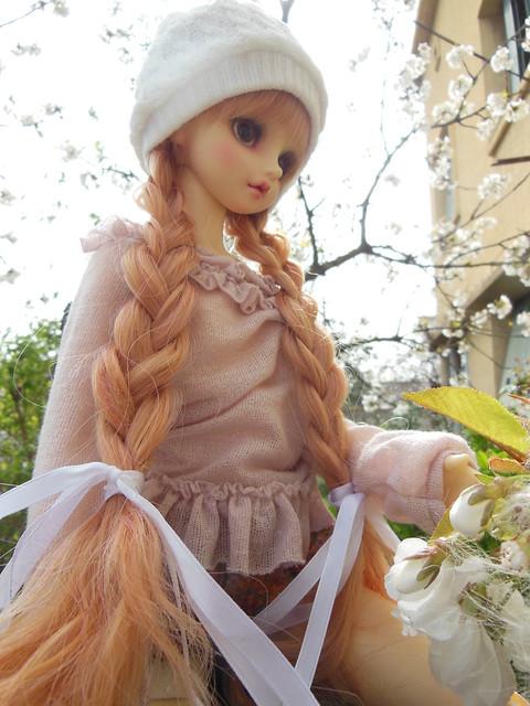 [Toulouse] Résine et fleurs de cerisier 8629634656_7c767b432c_z