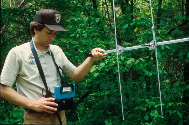 Using radio telemetry to track Indiana bats.   Flickr - Photo Sharing!