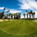 Desert Island Eigth Green by Will shoot for lenses