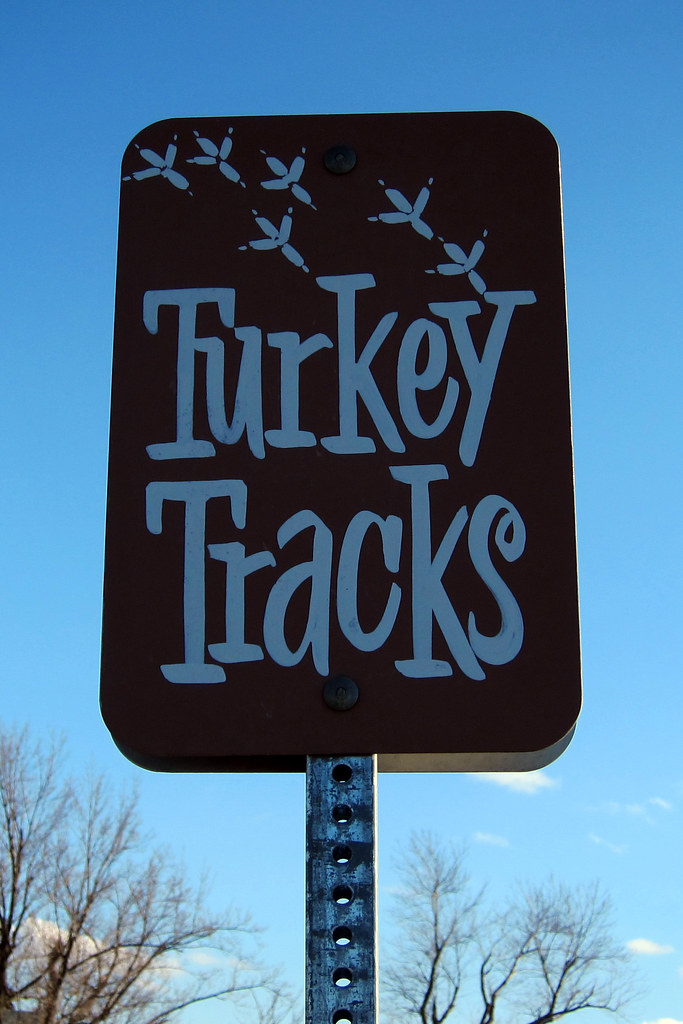 Turkey Tracks