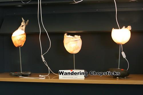 4 Icelandic Phallological Museum - Reykjavik - Iceland 7