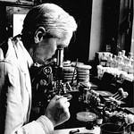 ¿Quién fue Alexander Fleming? (Biografía resumida)