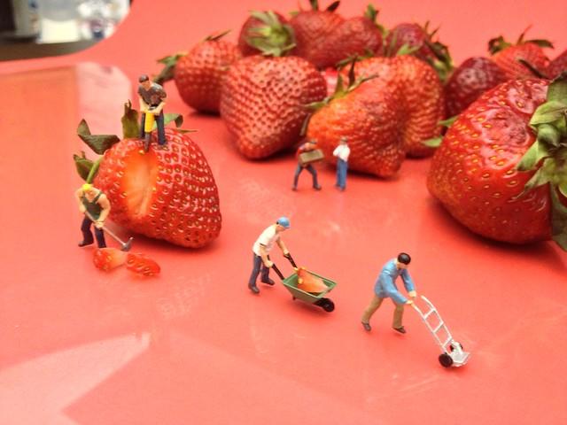 Berry Hard Work Setup (3/11)