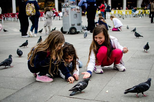 Children feeding pigeons in St. Mark's Square.