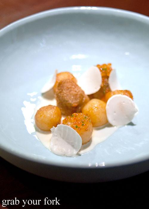 potato roe and parson's nose at momofuku seiobo the star sydney