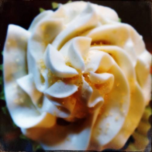 Cupcake (282/365) by elawgrrl