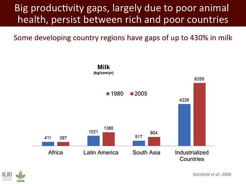 Big productivity gaps, largely due to poor animal health, persist between rich and poor countries