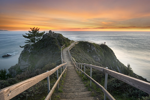 ocean sanfrancisco sunset sea sky cliff mist seascape tree beach northerncalifornia clouds stairs marine day pacific cloudy path marin lookout bayarea lone norcal viewpoint sausalito muir pathway uwb nohdr