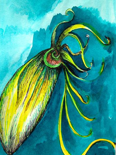 Squid by Michelle Schamis