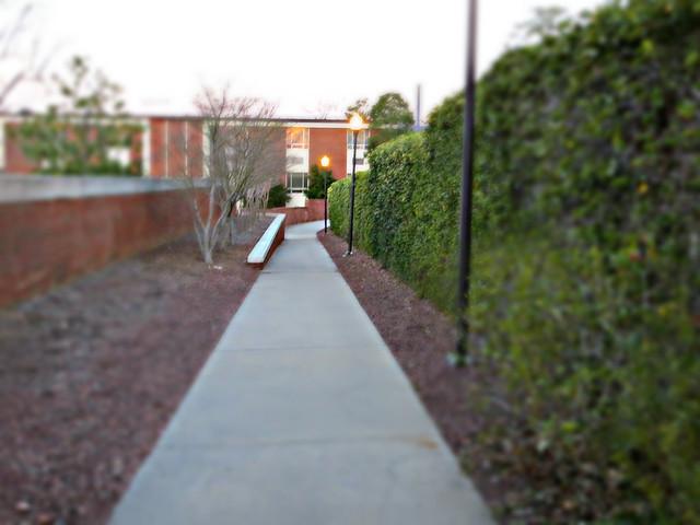 98.365 {Path to no where...}