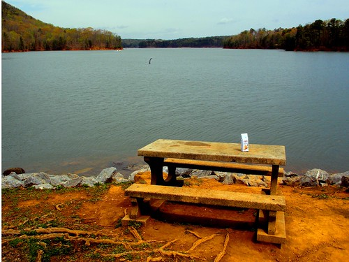 blue lake nature water bench landscape picnic snack allatoona