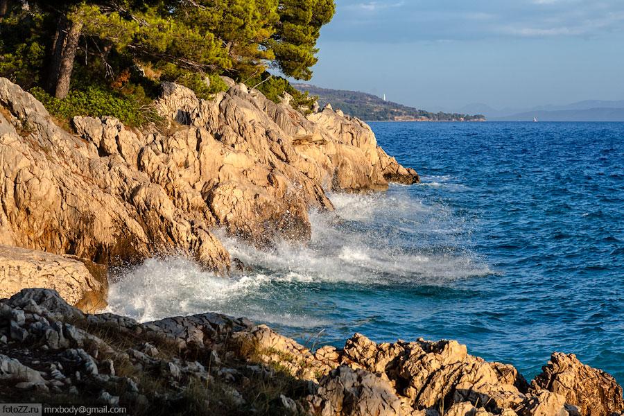 17-Wild-Makarska