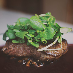Fillet Steak, Mushrooms & Watercress