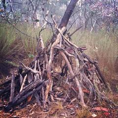 Stick house. #canberra #mtainslie #maze