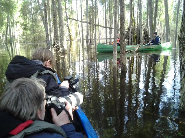 Karuskose floodplain forests